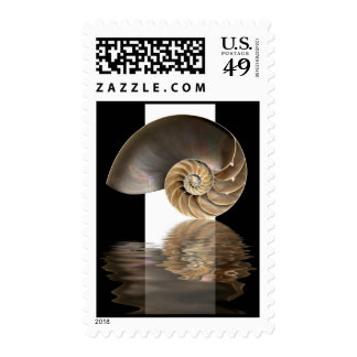 Nautilus Shell Card Postage Stamps