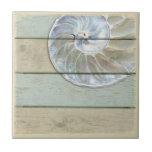 "Nautilus Shell Ceramic Tile<br><div class=""desc"">Nautilus shell on distressed wood background.</div>"