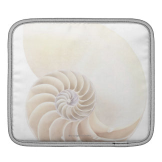 Nautilus shell, close-up iPad sleeve