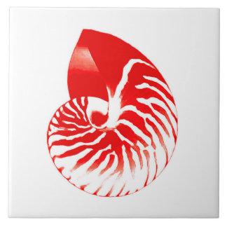 Nautilus shell - dark red and white ceramic tile