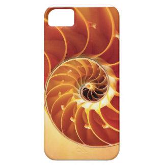 Nautilus Shell iPhone 5 Carcasas