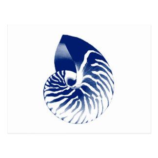 Nautilus shell - navy blue and white postcard