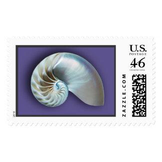 Nautilus Shell on plum Stamp