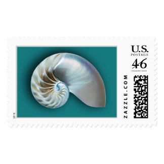 Nautilus shell on teal stamps
