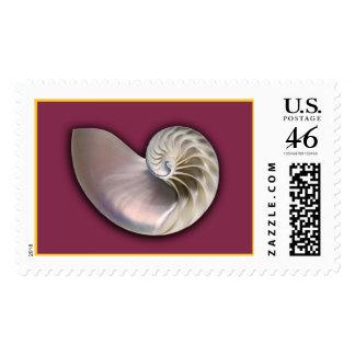 Nautilus Shell pink Stamp