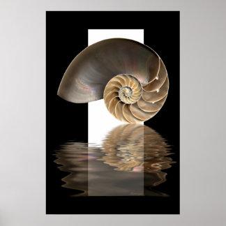 Nautilus shell Print