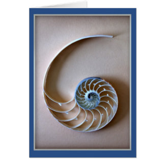 Nautilus Shell Section Card