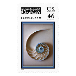 Nautilus Shell Section Stamp