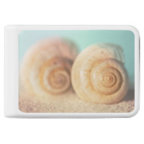 Nautilus Shells On Beach Power Bank