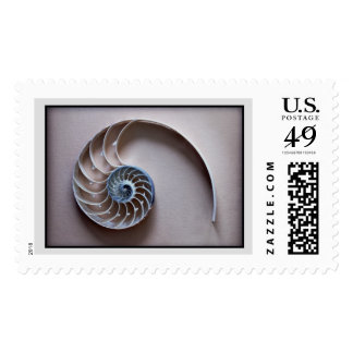 Nautilus slice postage