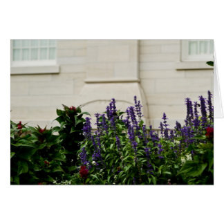 Nauvoo Temple Flowers Card