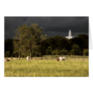 Nauvoo Temple With Oxen Greeting Card