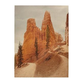 Navajo Loop Trail, Bryce Canyon Wood Wall Art