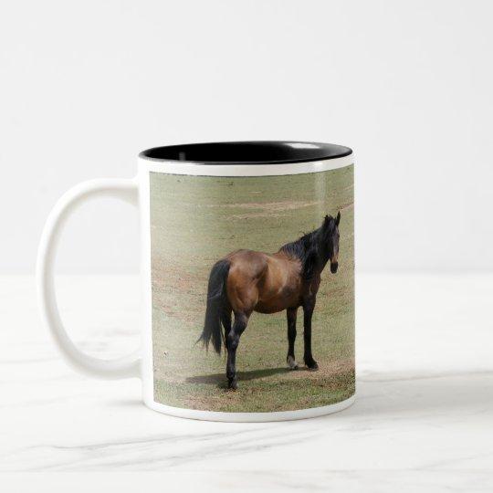Navajo Mustang~SAVE a LIFE, ADOPT a RESCUE Mug