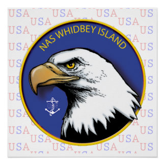 Naval Air Station Whidbey Island Perfect Poster