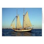 nave de podadoras de la puesta del sol felicitacion