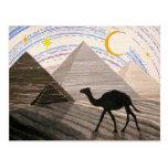 Nave del desierto tarjeta postal