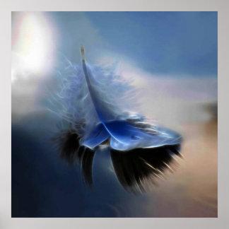 Navegación de la pluma blanca póster