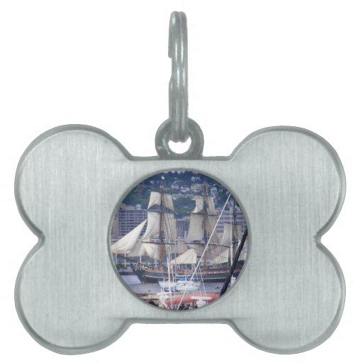 naves altas 004.jpg placa mascota