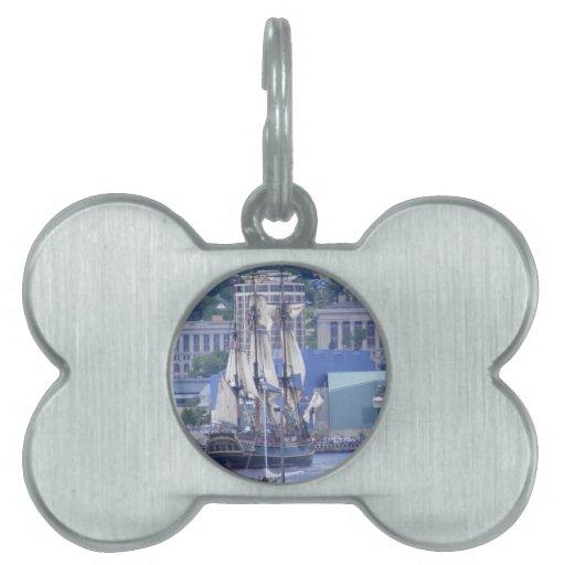 naves altas 009.jpg placa de mascota