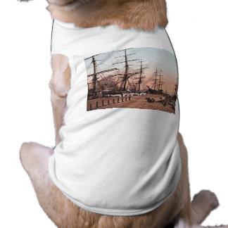 Naves en los muelles en San Francisco circa 1900 Camisetas De Perrito