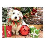 Navidad - afloramiento X - Maggie Postal