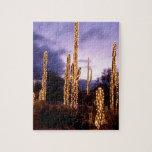 Navidad al sudoeste puzzle con fotos