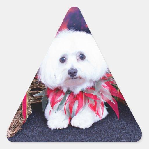 Navidad - algodón de Tulear - acogedor Pegatinas De Triangulo