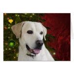 Navidad amarillo del labrador retriever tarjeta de felicitación