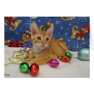 Navidad anaranjado del gatito del Tabby Tarjeta De Felicitación