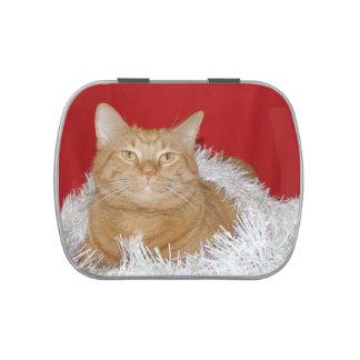 Navidad anaranjado del gato de tabby frascos de dulces