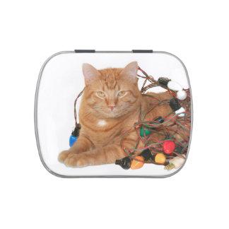 Navidad anaranjado del gato de tabby jarrones de caramelos