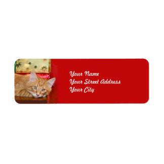 Navidad anaranjado del tabby etiqueta de remite
