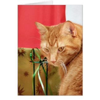 Navidad anaranjado del tabby tarjeta de felicitación