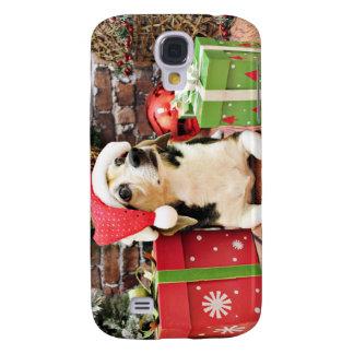 Navidad - beagle - Bailey