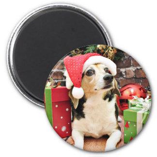 Navidad - beagle - Bailey Iman De Nevera