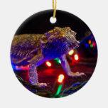 Navidad Beardie Ornamento De Reyes Magos