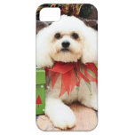 Navidad - Bichon Frise - Hermie iPhone 5 Case-Mate Carcasas