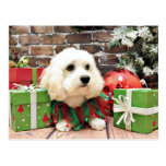 Navidad - Bichon Frise X - Bella Postales