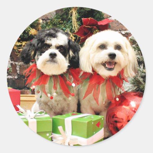 Navidad - Bichon Frise X - Bella y Lexi Pegatina Redonda