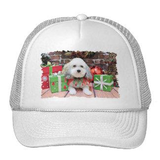 Navidad - Bichon Frise X - Macy Gorras