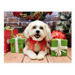 Navidad - Bichon X - Bella Tarjeta Postal