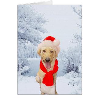 Navidad blanco de Santa del laboratorio feliz Tarjeta De Felicitación