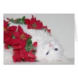 Navidad blanco del gatito tarjeta de felicitación