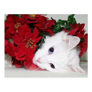 Navidad blanco del gatito tarjetas postales