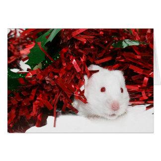 Navidad blanco del hámster tarjeta de felicitación