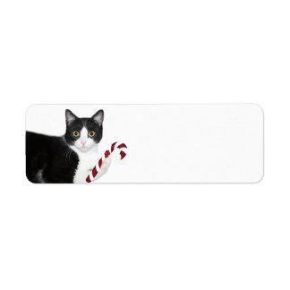 Navidad blanco y negro del gato etiqueta de remitente