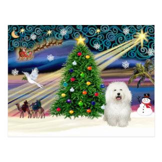 Navidad boloñés mágico tarjeta postal