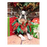 Navidad - Boston Terrier - elegante Postal