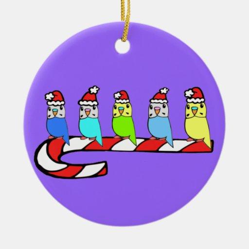 Navidad Budgies encaramado en el bastón de caramel Ornato